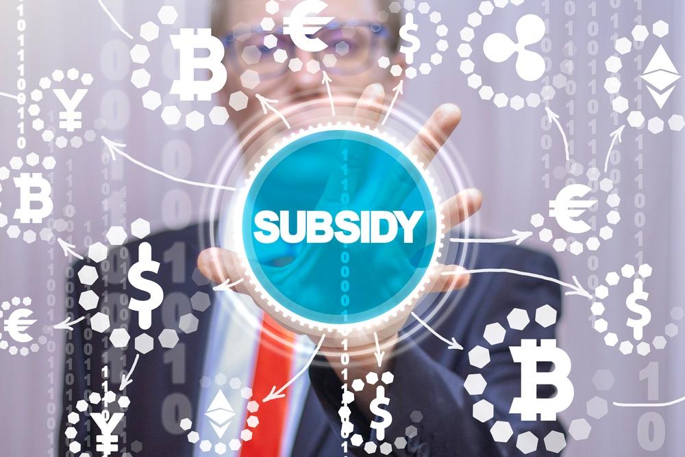Subsidies 2021